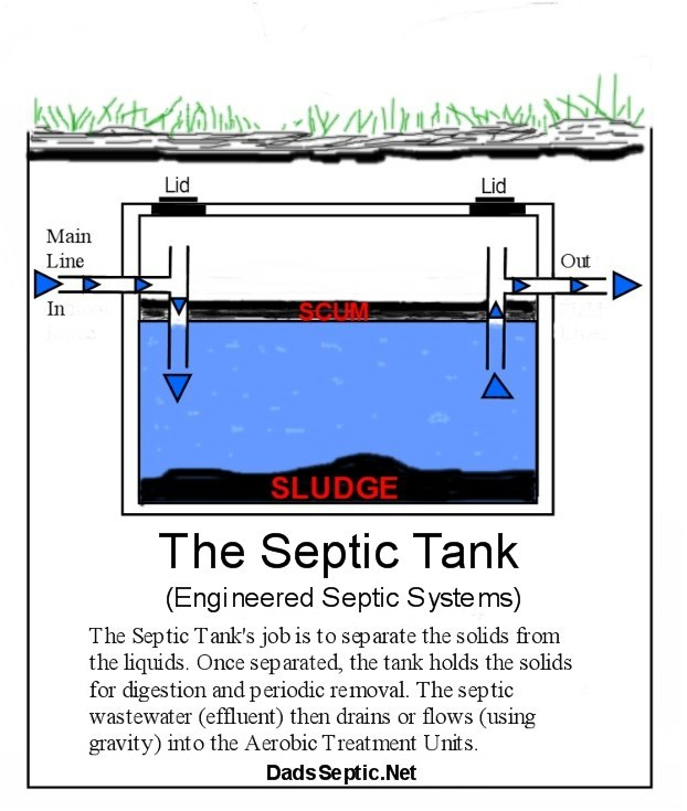 an overview of the septic system